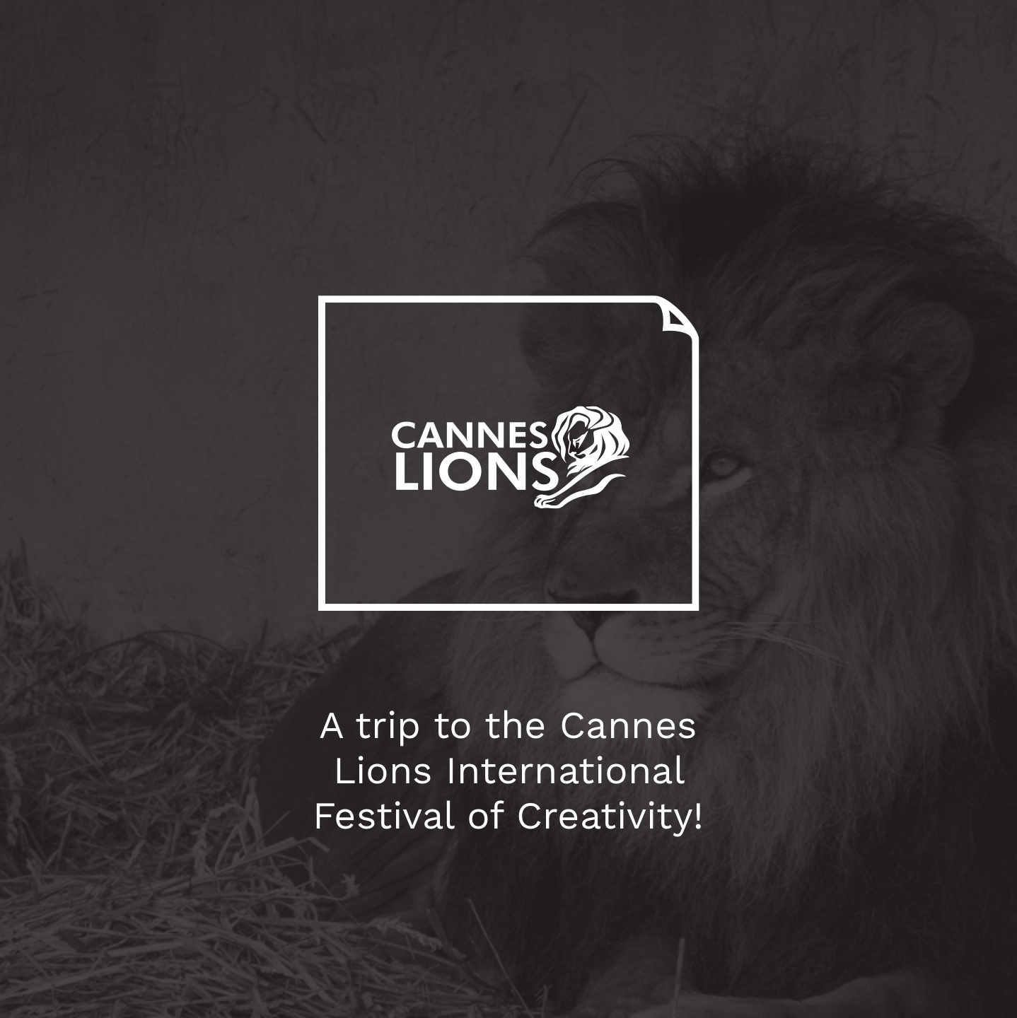 A trip to the Cannes Lions International Festival of Creativity!